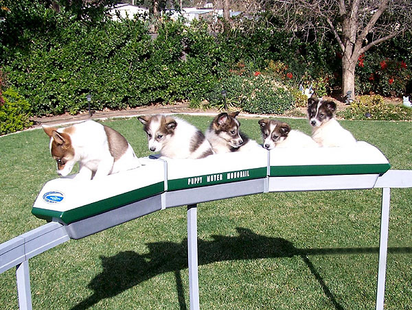 Monorail Modeling Page Puppy Mover